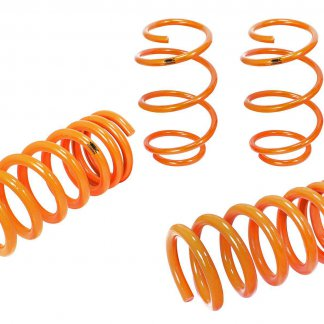 410-301002-N Ford Mustang (S550) 2015 L4-2.3L (t)/V6-3.7L Lowering Springs (Org)